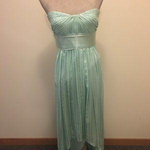 BCBG Maxazria Alicia Silk Evening Gown